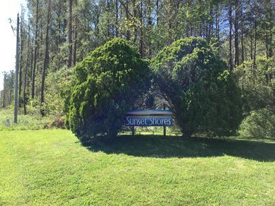 93 MALLARD DR, Merritt, NC 28556 - Photo 1
