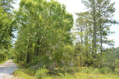 LOT D WHORTONSVILLE ROAD # D, Merritt, NC 28556 - Photo 2