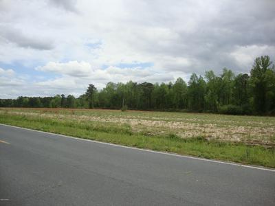 21 OLD NC 903, Kenansville, NC 28349 - Photo 1
