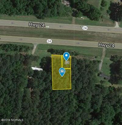 0 NC HWY 24, Kenansville, NC 28349 - Photo 1