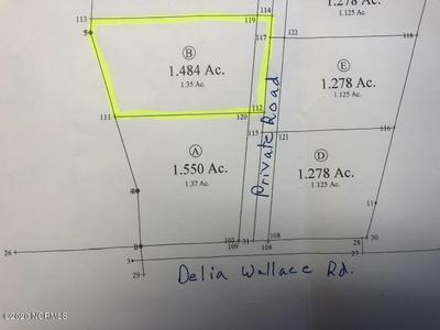 0 DELIA WALLACE ROAD, BATH, NC 27808 - Photo 1