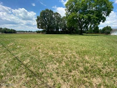 4140 W WILSON ST, Farmville, NC 27828 - Photo 2