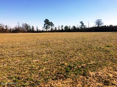 283 ACRES C C ROAD, Garland, NC 28441 - Photo 2