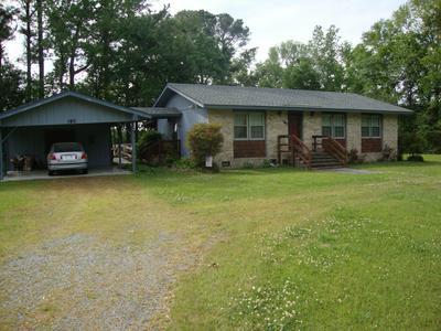 185 GAIL RD, Willard, NC 28478 - Photo 2