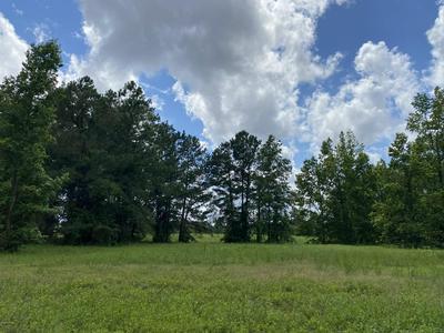 162 W WINDING WAY, Wallace, NC 28466 - Photo 1