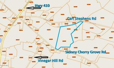 0 CARL STEPHENS ROAD, Clarendon, NC 28432 - Photo 2