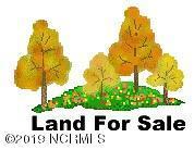 0 FARM LANE, Stantonsburg, NC 27883 - Photo 1