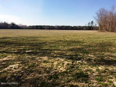 283 ACRES C C ROAD, Garland, NC 28441 - Photo 1