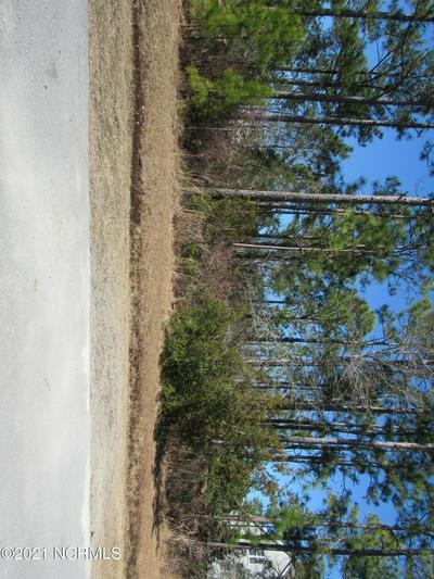 115 BOBWHITE CIR # 19, Cape Carteret, NC 28584 - Photo 2