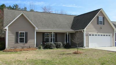 206 CHANDLER SIMPSON CT, Beulaville, NC 28518 - Photo 1