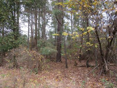 LOT 019 BUTTERFLY LANE, Shannon, NC 28386 - Photo 2
