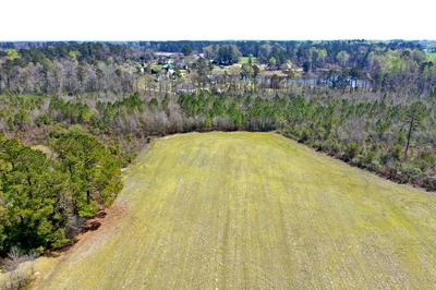 0 FRED POWELL ROAD, Whiteville, NC 28472 - Photo 1