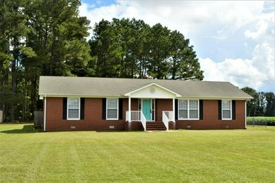 12060 US HWY 421, Currie, NC 28435 - Photo 1