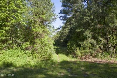 0 TAYLORS GIN ROAD, Castalia, NC 27816 - Photo 2