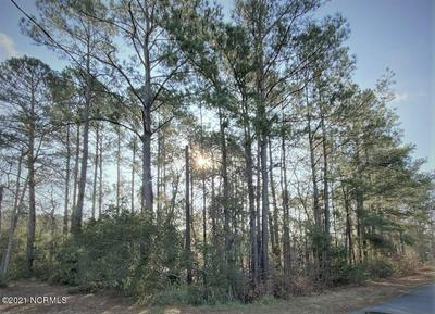 1641 PINE VALLEY DR SW # 28, Supply, NC 28462 - Photo 2