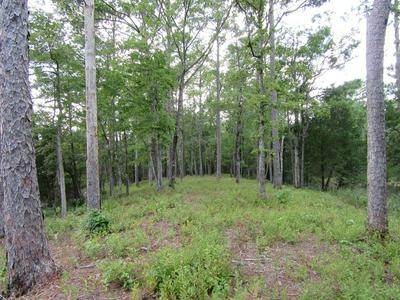671 PLANTATION PKWY # 44, Oriental, NC 28571 - Photo 2