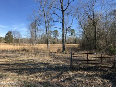 0 FISHING CREEK ROAD, Tarboro, NC 27886 - Photo 2