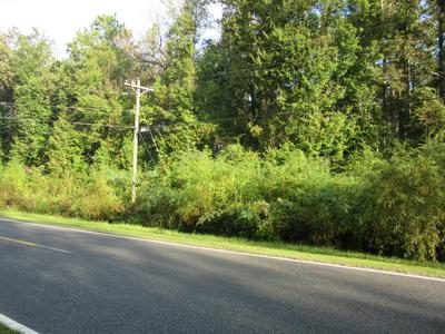 NEAR 1671 OLD WILMINGTON ROAD, Whiteville, NC 28472 - Photo 1