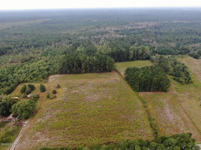 8.55 ACRES OLD FAYETTEVILLE ROAD # 3, Garland, NC 28441 - Photo 2