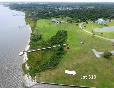 424 IXON PL # 313, Newport, NC 28570 - Photo 2