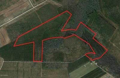 1500 MOORES SWAMP ROAD, Grantsboro, NC 28529 - Photo 1
