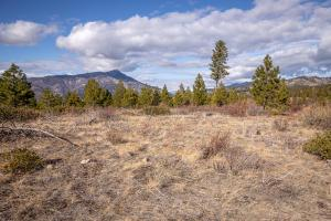 TBD TRACT A19 GRAY CREEK AF803812 RD, Entiat, WA 98822 - Photo 2