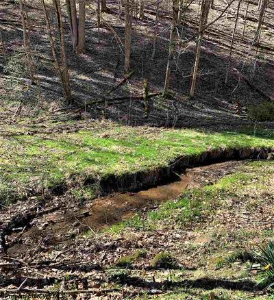 TBD TROUSER LEG ROAD, Wallace, WV 26448 - Photo 2