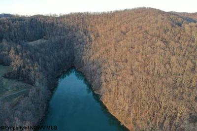 THE MEADOWS DRIVE, Horner, WV 26372 - Photo 2