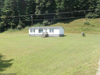 2038 RUSH FORK RD, IVYDALE, WV 25113 - Photo 1