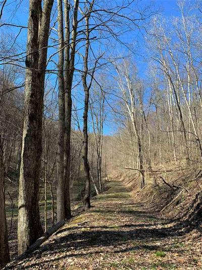 TBD TROUSER LEG ROAD, Wallace, WV 26448 - Photo 1