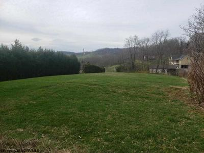 0.55 ACRE LOT S 2ND STREET, Shinnston, WV 26431 - Photo 2