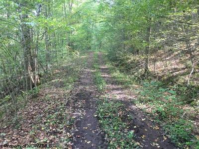 BACK WATER ROAD, Philippi, WV 26416 - Photo 2