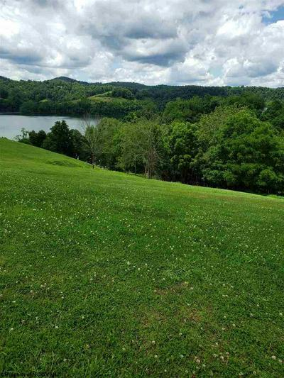 LOT 2 ESTATES AT THE MEADOWS (TBD), Horner, WV 26372 - Photo 2