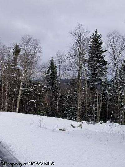 LOT 21 SILVER MOUNTAIN DRIVE, Snowshoe, WV 26209 - Photo 2