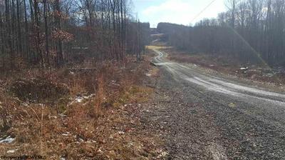 13 HUDSON MILL RD, Albright, WV 26519 - Photo 2