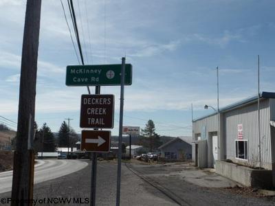 0 MILLER MINE ROAD, Bretz, WV 26524 - Photo 2