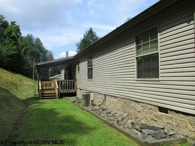 11188 TALLMANSVILLE RD, TALLMANSVILLE, WV 26237 - Photo 2