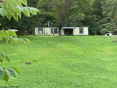 11305 WILSIE RD, Rosedale, WV 26636 - Photo 1