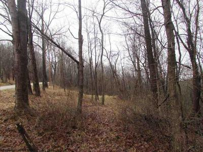 47 W ROUTE ACRES, Smithville, WV 26178 - Photo 2