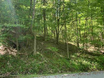 TBD HILLTOP DRIVE, Philippi, WV 26416 - Photo 2