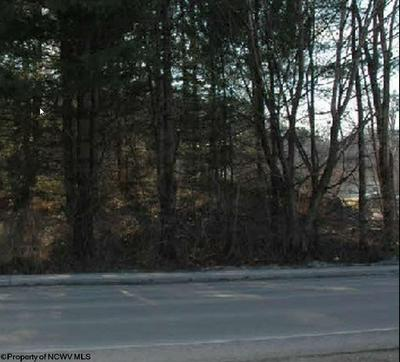 TBD CHESTNUT STREET, Parsons, WV 26287 - Photo 2