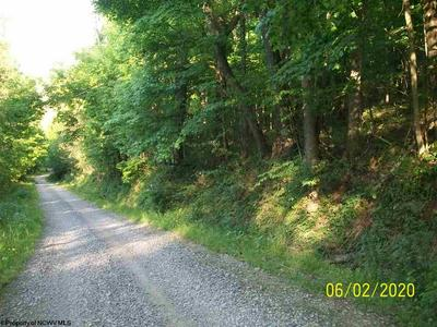 00 FAIRVIEW HILL ROAD, Moatsville, WV 26405 - Photo 1