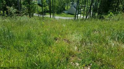 175 CADDIE CT, Maidsville, WV 26541 - Photo 2