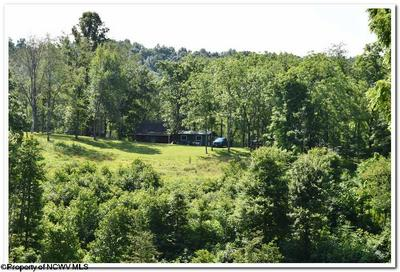TBD SUGAR CAMP ROAD, Crawford, WV 26447 - Photo 1