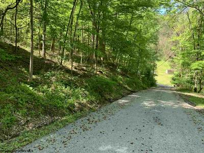 TBD HILLTOP DRIVE, Philippi, WV 26416 - Photo 1