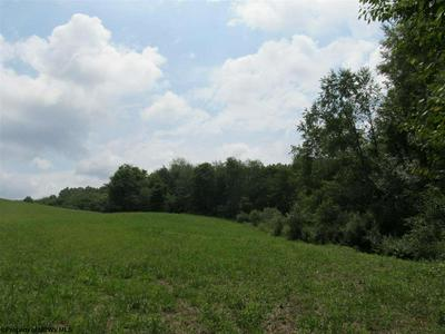 TBD 40 ACRES RT 76 ROAD, Philippi, WV 26416 - Photo 2