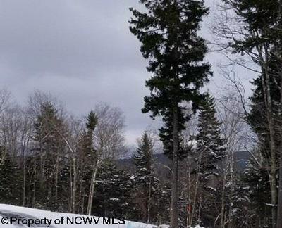 LOT 10 SILVER MOUNTAIN DRIVE, Snowshoe, WV 26209 - Photo 1