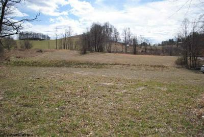 UNION ROAD, Philippi, WV 26416 - Photo 2