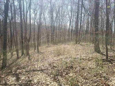 2.12 ACRE LOT CRESTVIEW ACRES DRIVE, Shinnston, WV 26431 - Photo 1