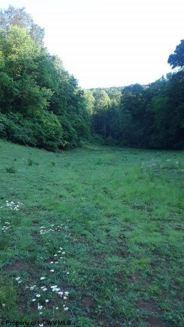 301 HUNTERS COVE RD, Walkersville, WV 26447 - Photo 2